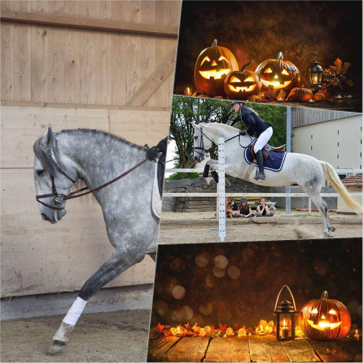 Concours interne «Halloween» – 1er novembre 2021